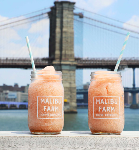 Malibu Farm Presents: Farm Stand and Petting Zoo at Pier 17