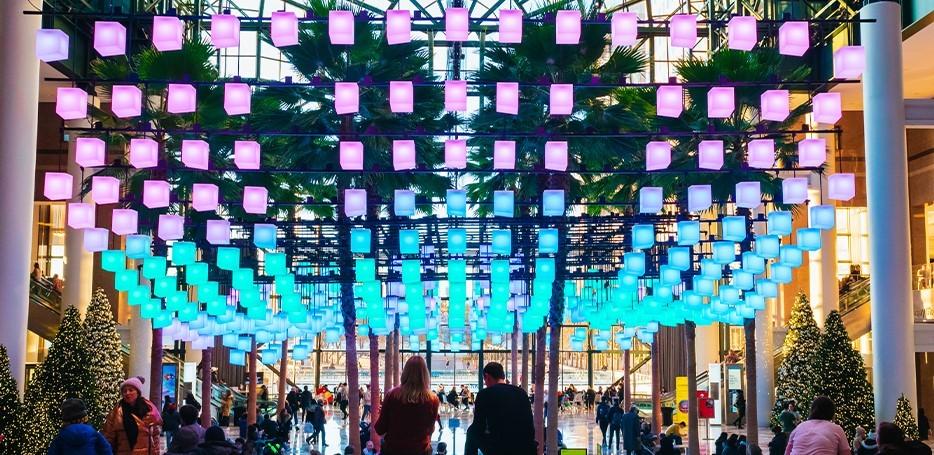 Winter Roundup of Activities in Lower Manhattan